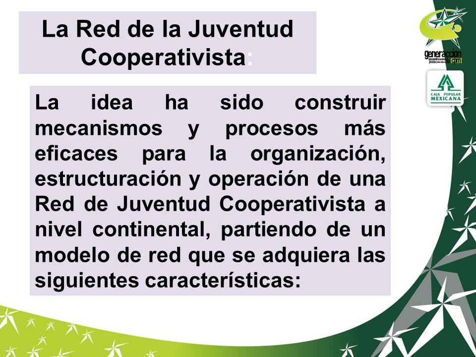 La idea ha sido construir mecanismos y procesos más eficaces para la organización, estructuración y operación de una Red de Juventud Cooperativista a