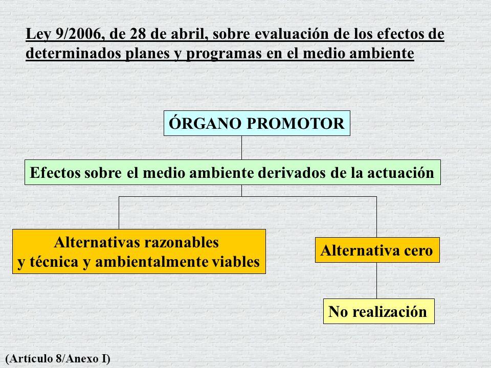Ley 9/2006, de 28 de abril, sobre evaluación de los efectos de determinados planes y programas en el medio ambiente (Artículo 8/Anexo I) Alternativa c