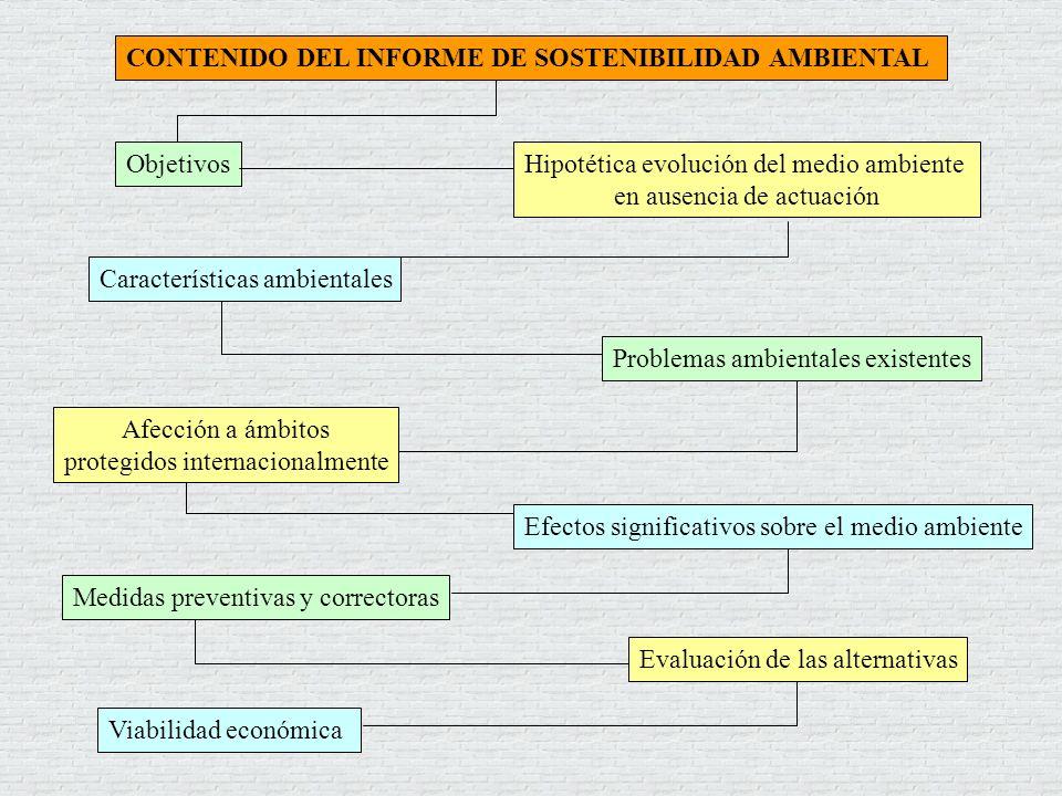 CONTENIDO DEL INFORME DE SOSTENIBILIDAD AMBIENTAL Objetivos Problemas ambientales existentes Viabilidad económica Evaluación de las alternativas Carac