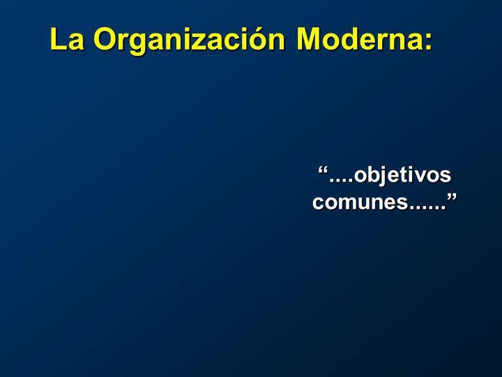 ....objetivos comunes...... La Organización Moderna: