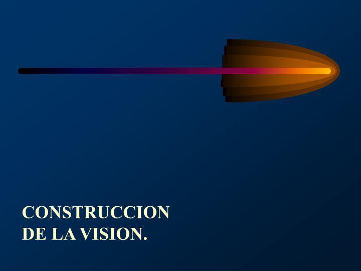 CONSTRUCCION DE LA VISION.