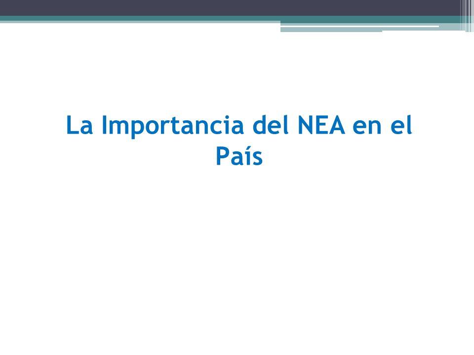 La Importancia del NEA en el País