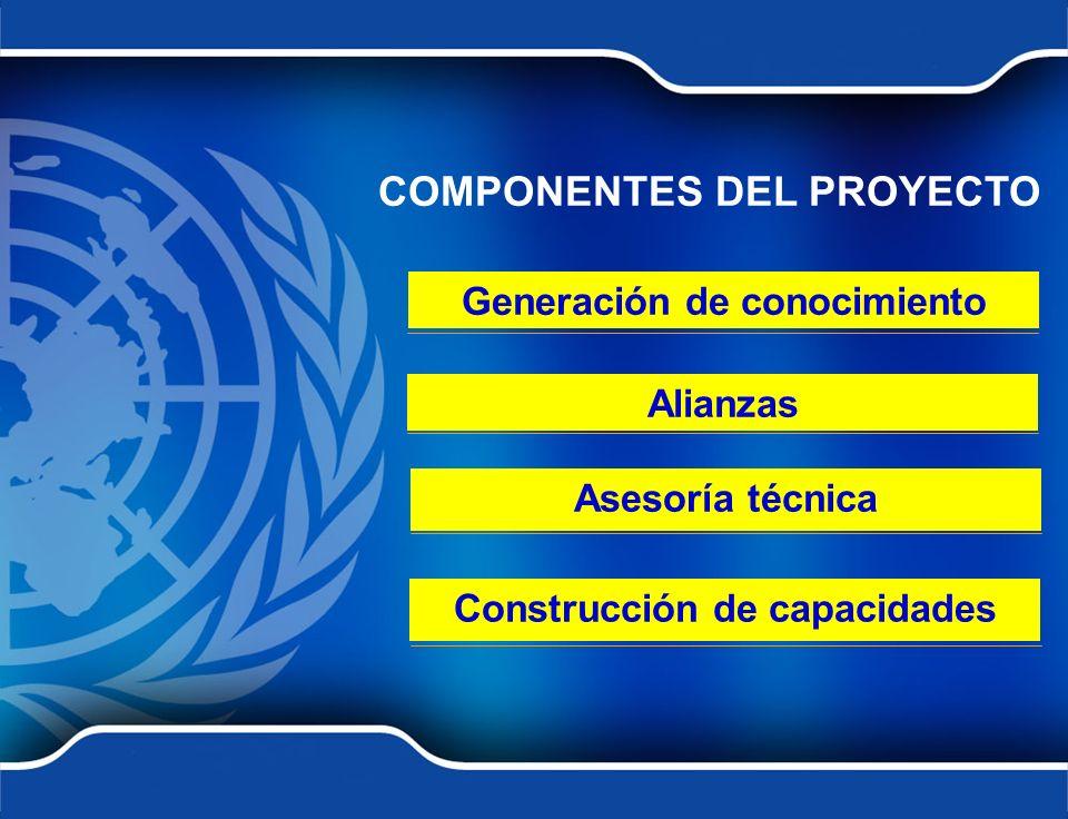 COMPONENTES DEL PROYECTO Generación de conocimiento Alianzas Asesoría técnica Construcción de capacidades