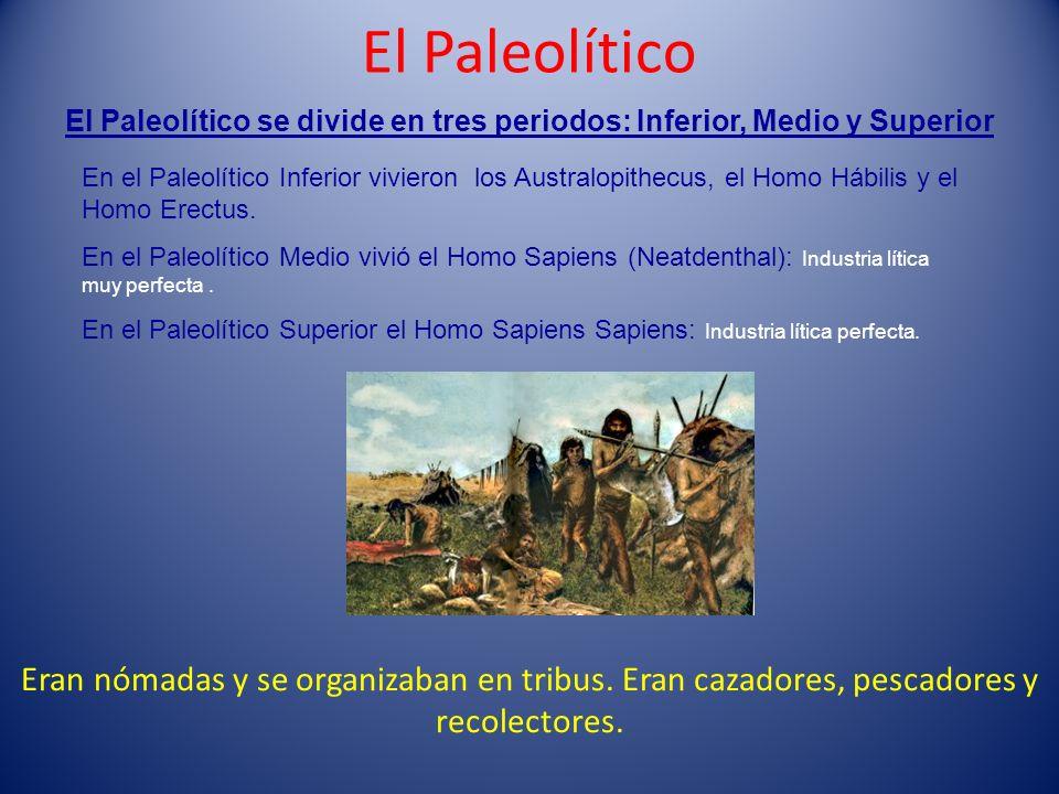El Paleolítico Eran nómadas y se organizaban en tribus. Eran cazadores, pescadores y recolectores. El Paleolítico se divide en tres periodos: Inferior