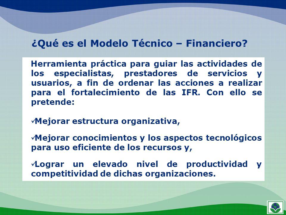 ¿Qué es el Modelo Técnico – Financiero? Herramienta práctica para guiar las actividades de los especialistas, prestadores de servicios y usuarios, a f