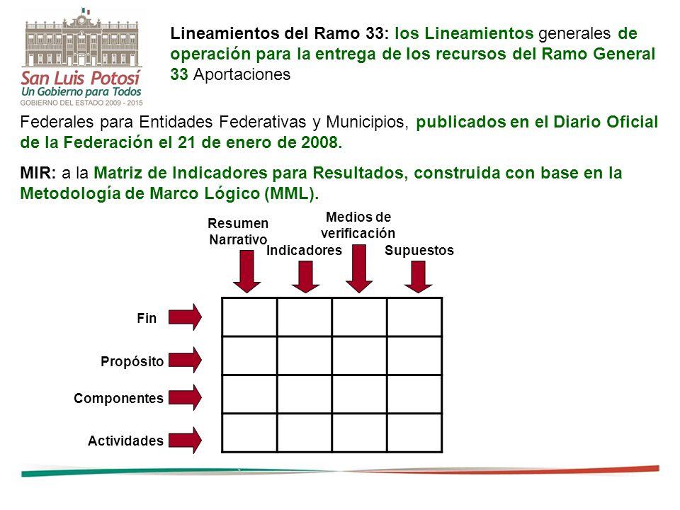 21 Federales para Entidades Federativas y Municipios, publicados en el Diario Oficial de la Federación el 21 de enero de 2008. MIR: a la Matriz de Ind