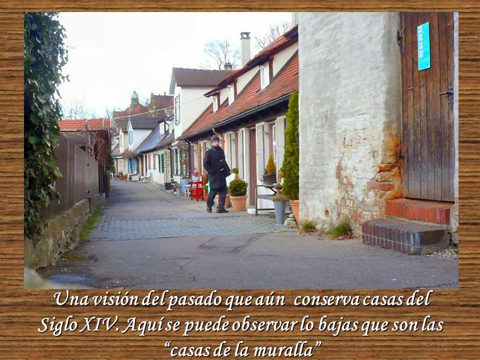 El otro lado de las casas de la muralla, increiblemente bien conservadas y acogedoras.