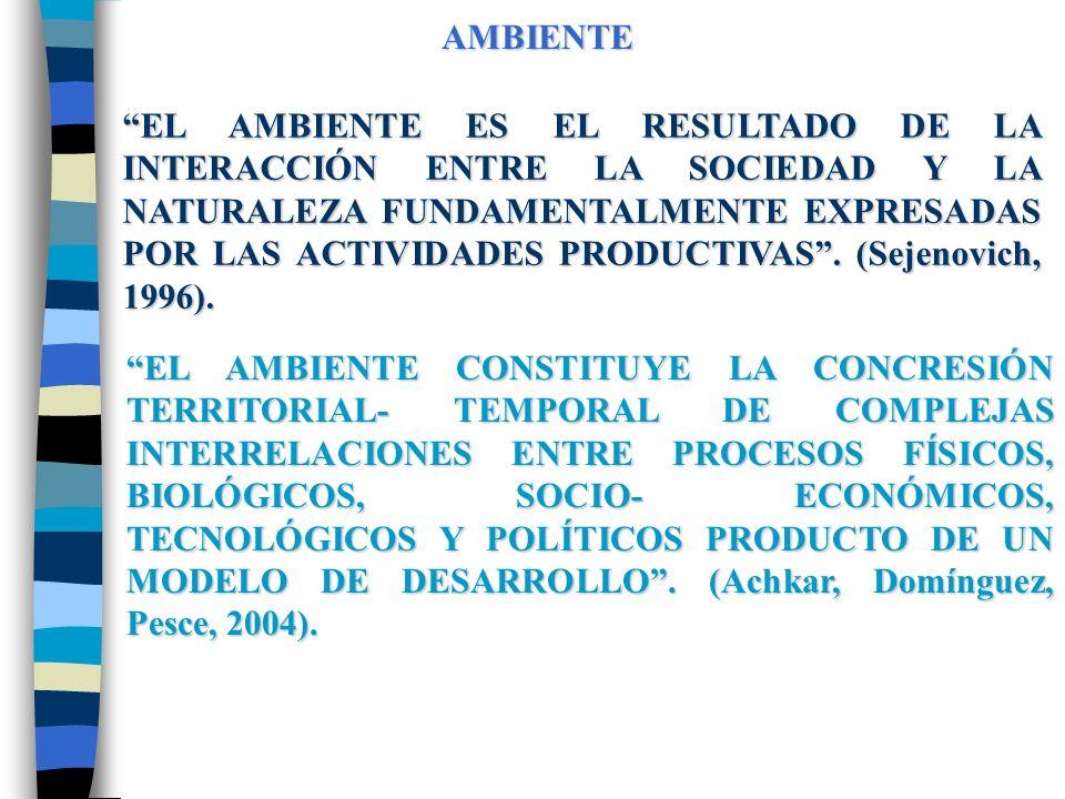 AMBIENTE EL AMBIENTE ES EL RESULTADO DE LA INTERACCIÓN ENTRE LA SOCIEDAD Y LA NATURALEZA FUNDAMENTALMENTE EXPRESADAS POR LAS ACTIVIDADES PRODUCTIVAS.