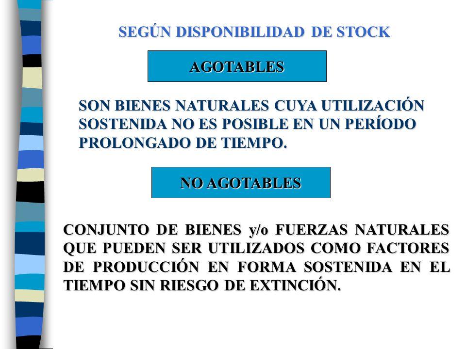 SEGÚN DISPONIBILIDAD DE STOCK AGOTABLES SON BIENES NATURALES CUYA UTILIZACIÓN SOSTENIDA NO ES POSIBLE EN UN PERÍODO PROLONGADO DE TIEMPO.