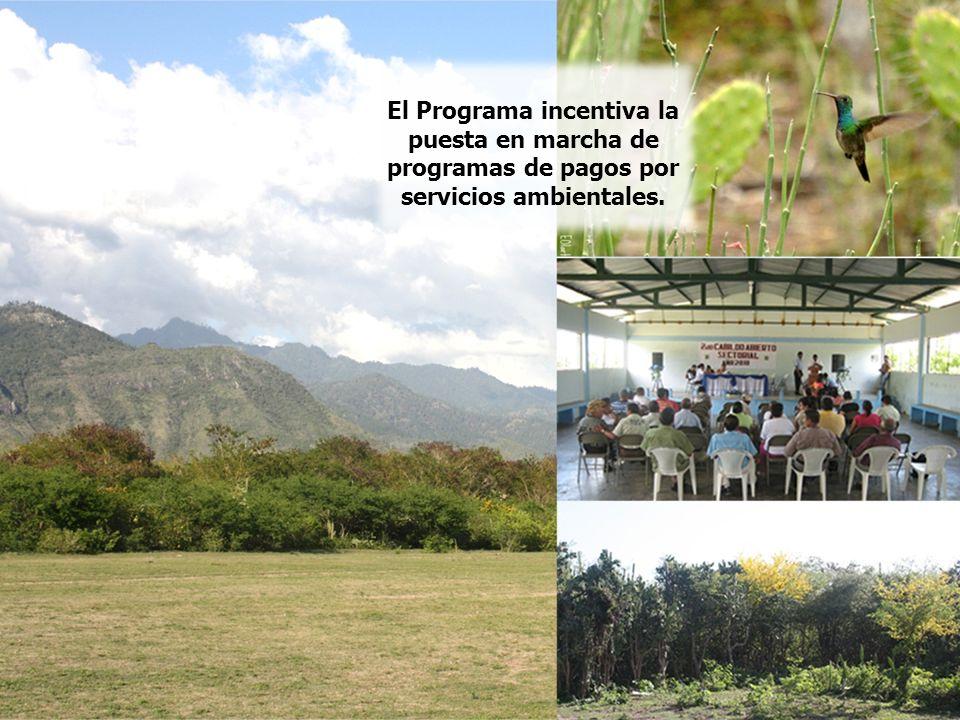 Se fomentan mejores prácticas ambientales y el desarrollo de procesos productivos amigables con el medio ambiente y la biodiversidad, haciendo partícipes a los habitantes de las áreas asistidas.