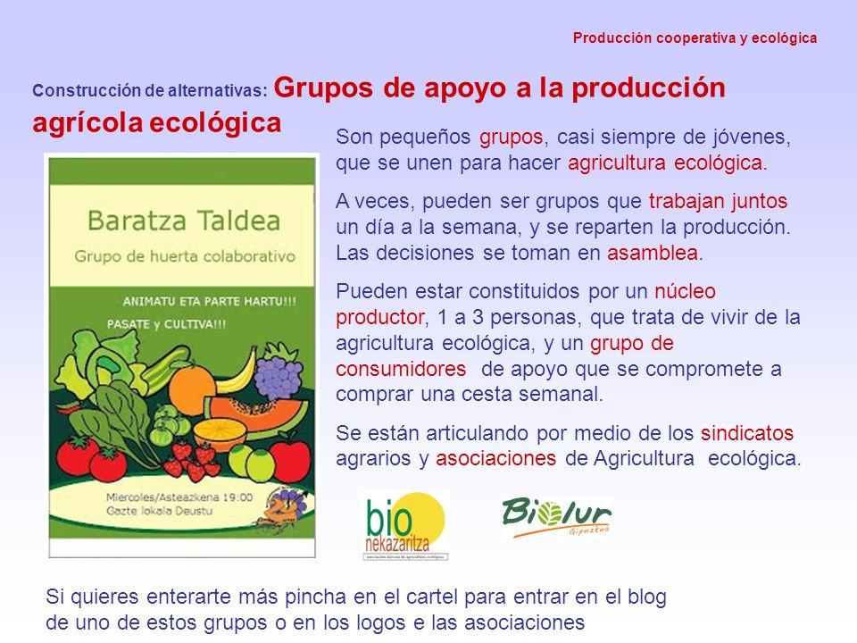 Producción cooperativa y ecológica Construcción de alternativas: Grupos de apoyo a la producción agrícola ecológica Son pequeños grupos, casi siempre de jóvenes, que se unen para hacer agricultura ecológica.
