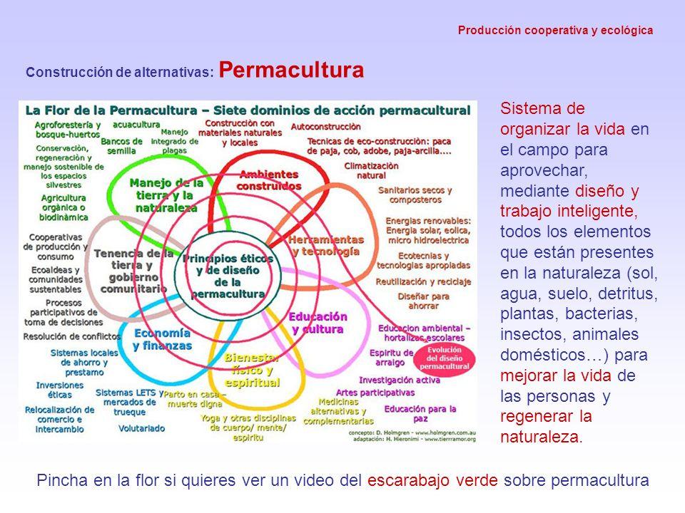 Producción cooperativa y ecológica Construcción de alternativas: Permacultura Sistema de organizar la vida en el campo para aprovechar, mediante diseñ