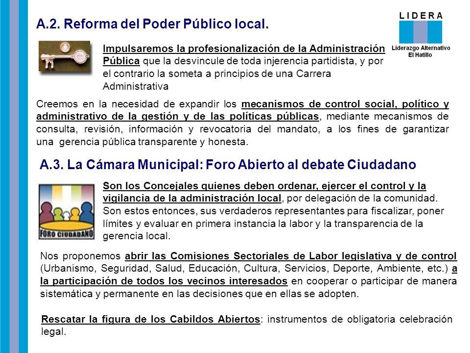 A.2. Reforma del Poder Público local.