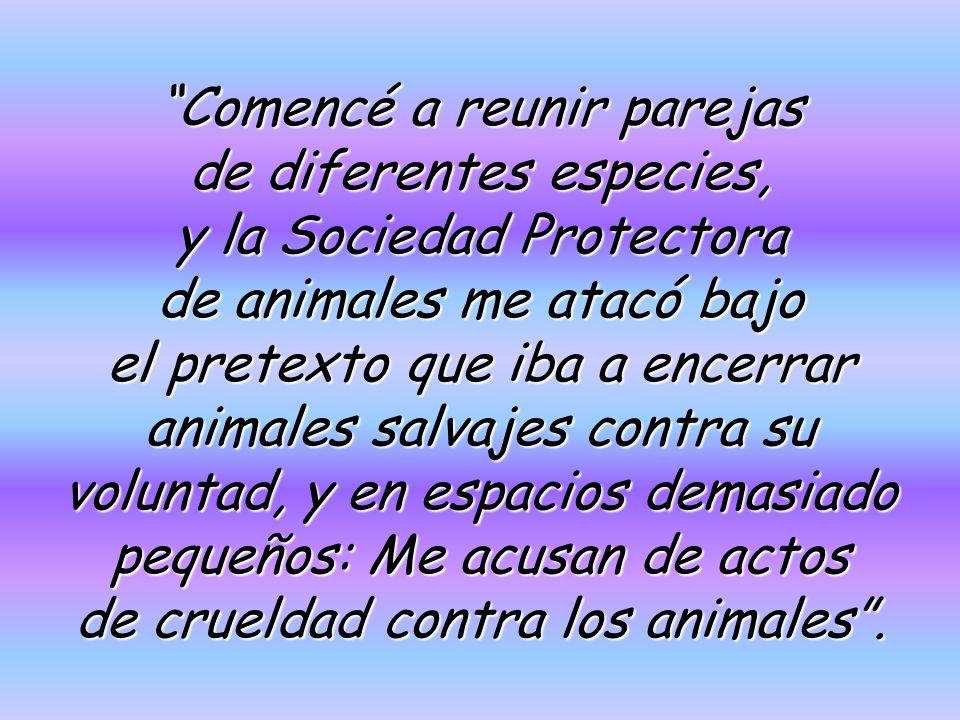 Comencé a reunir parejas de diferentes especies, y la Sociedad Protectora de animales me atacó bajo el pretexto que iba a encerrar animales salvajes contra su voluntad, y en espacios demasiado pequeños: Me acusan de actos de crueldad contra los animales.