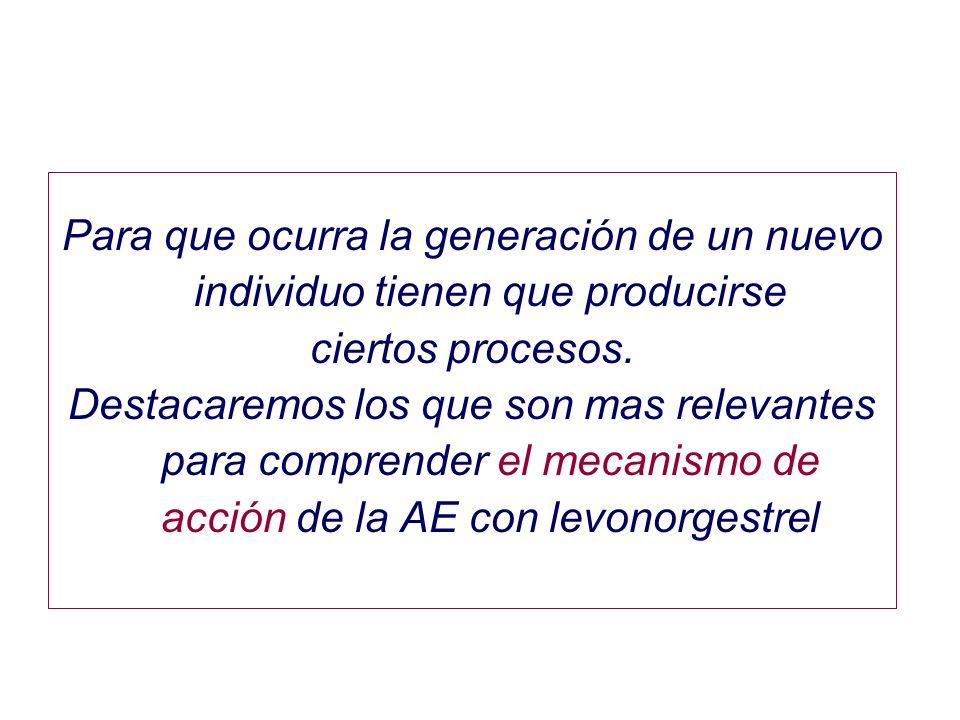 Para que ocurra la generación de un nuevo individuo tienen que producirse ciertos procesos. Destacaremos los que son mas relevantes para comprender el
