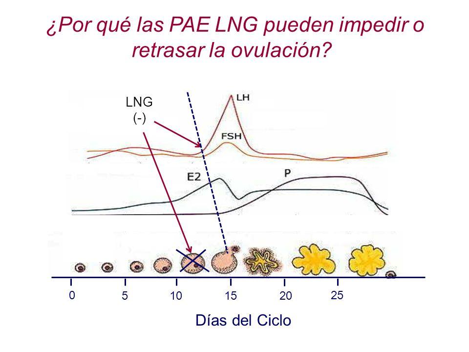 ¿Por qué las PAE LNG pueden impedir o retrasar la ovulación? 0 10 15 20 25 5 LNG (-) Días del Ciclo