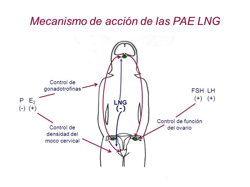 UTERO VAGINA Mecanismo de acción de las PAE LNG P E 2 (-) (+) FSH LH (+) (+) Control de densidad del moco cervical Control de función del ovario Contr