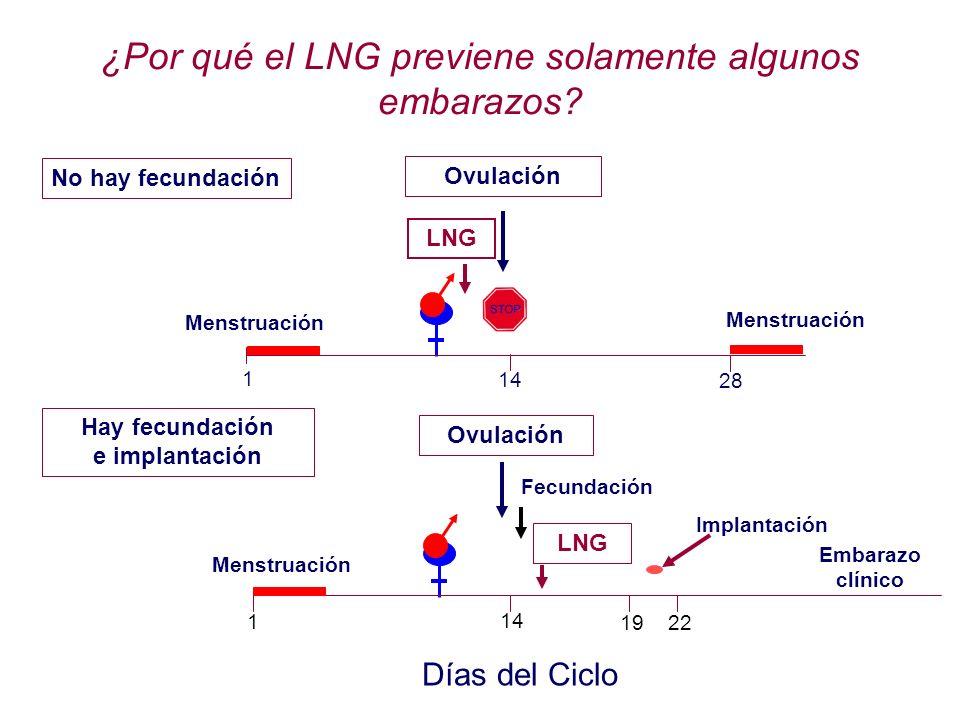¿Por qué el LNG previene solamente algunos embarazos? Ovulación LNG Menstruación No hay fecundación Menstruación 1 14 28 Ovulación Fecundación Implant