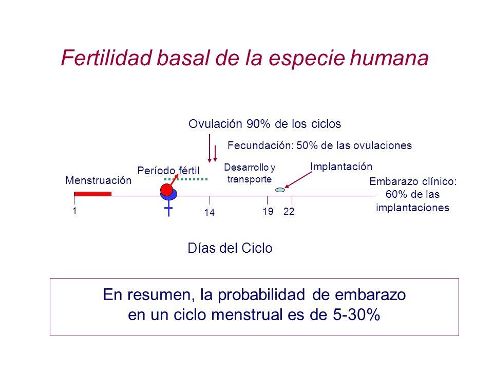 Días del Ciclo 14 Ovulación 90% de los ciclos Período fértil Fecundación: 50% de las ovulaciones 19 22 Implantación Fertilidad basal de la especie hum