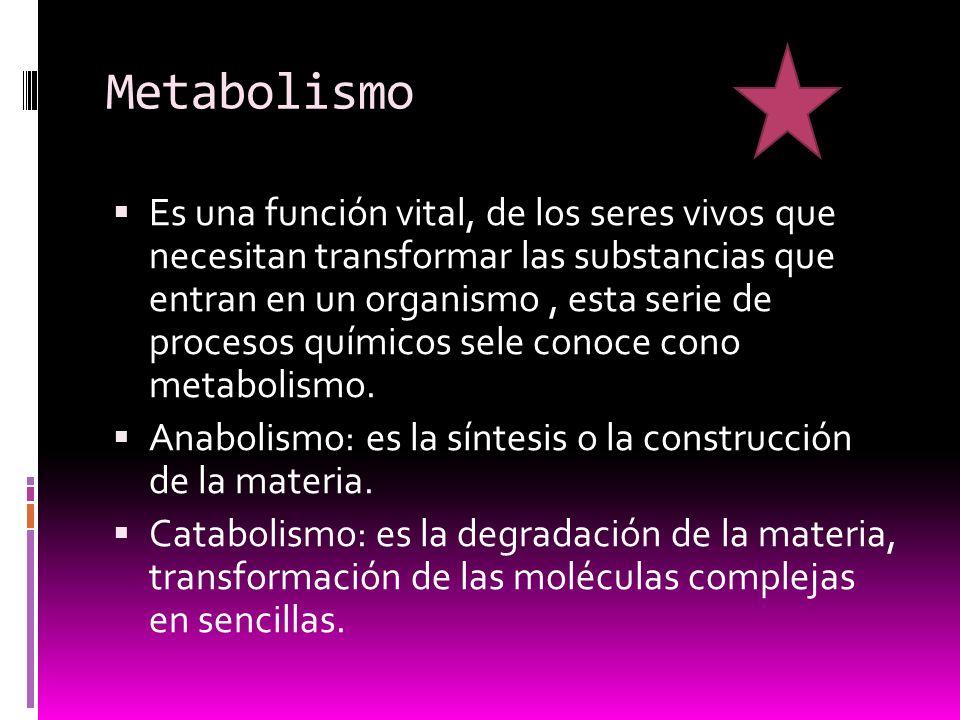 Metabolismo Es una función vital, de los seres vivos que necesitan transformar las substancias que entran en un organismo, esta serie de procesos químicos sele conoce cono metabolismo.