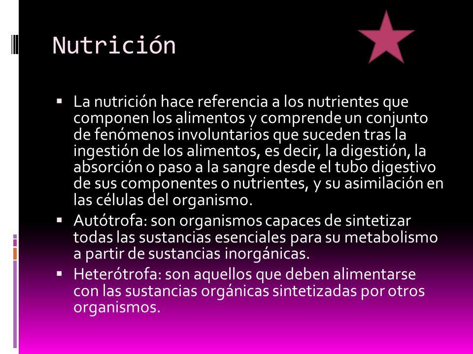 Nutrición La nutrición hace referencia a los nutrientes que componen los alimentos y comprende un conjunto de fenómenos involuntarios que suceden tras la ingestión de los alimentos, es decir, la digestión, la absorción o paso a la sangre desde el tubo digestivo de sus componentes o nutrientes, y su asimilación en las células del organismo.