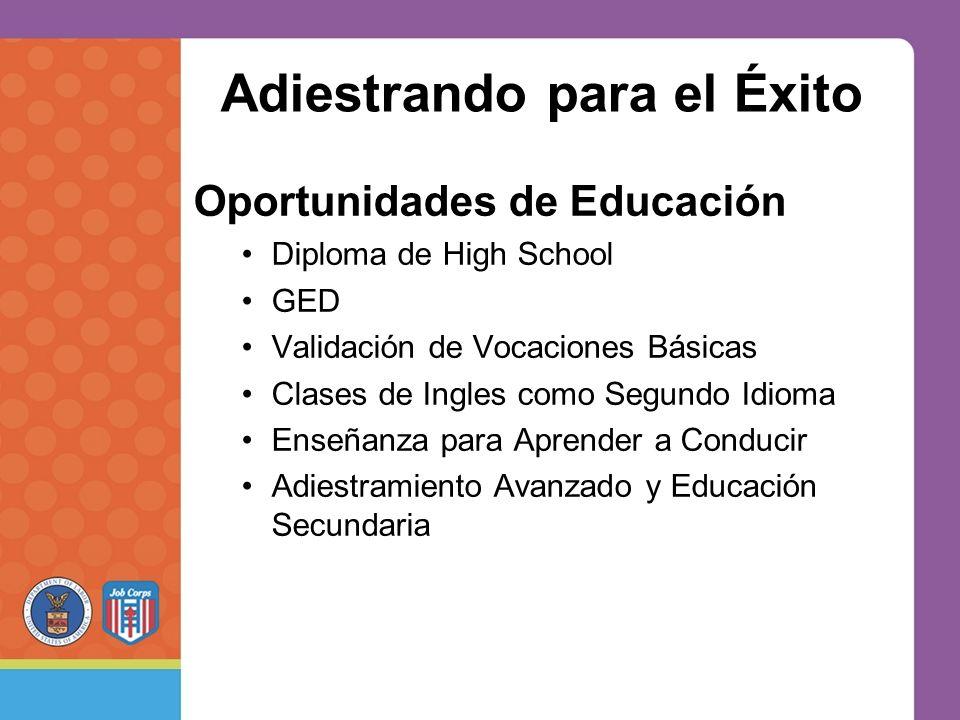 Adiestrando para el Éxito Oportunidades de Educación Diploma de High School GED Validación de Vocaciones Básicas Clases de Ingles como Segundo Idioma Enseñanza para Aprender a Conducir Adiestramiento Avanzado y Educación Secundaria