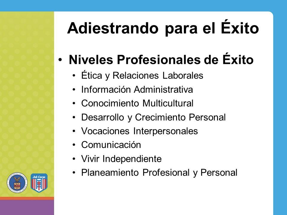 Adiestrando para el Éxito Niveles Profesionales de Éxito Ética y Relaciones Laborales Información Administrativa Conocimiento Multicultural Desarrollo y Crecimiento Personal Vocaciones Interpersonales Comunicación Vivir Independiente Planeamiento Profesional y Personal