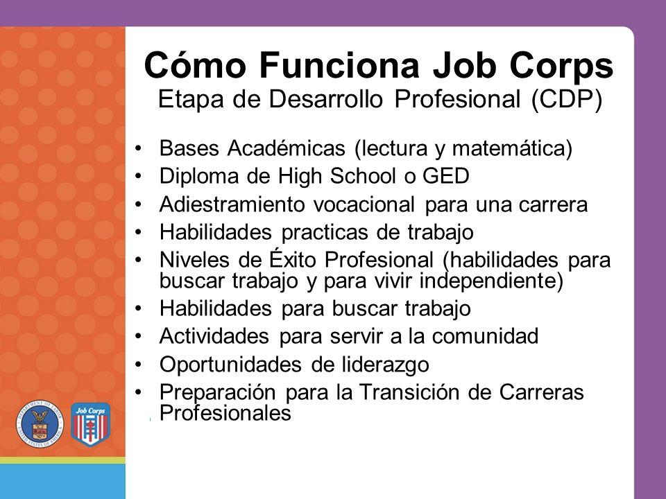 Cómo Funciona Job Corps Bases Académicas (lectura y matemática) Diploma de High School o GED Adiestramiento vocacional para una carrera Habilidades practicas de trabajo Niveles de Éxito Profesional (habilidades para buscar trabajo y para vivir independiente) Habilidades para buscar trabajo Actividades para servir a la comunidad Oportunidades de liderazgo Preparación para la Transición de Carreras Profesionales Etapa de Desarrollo Profesional (CDP)
