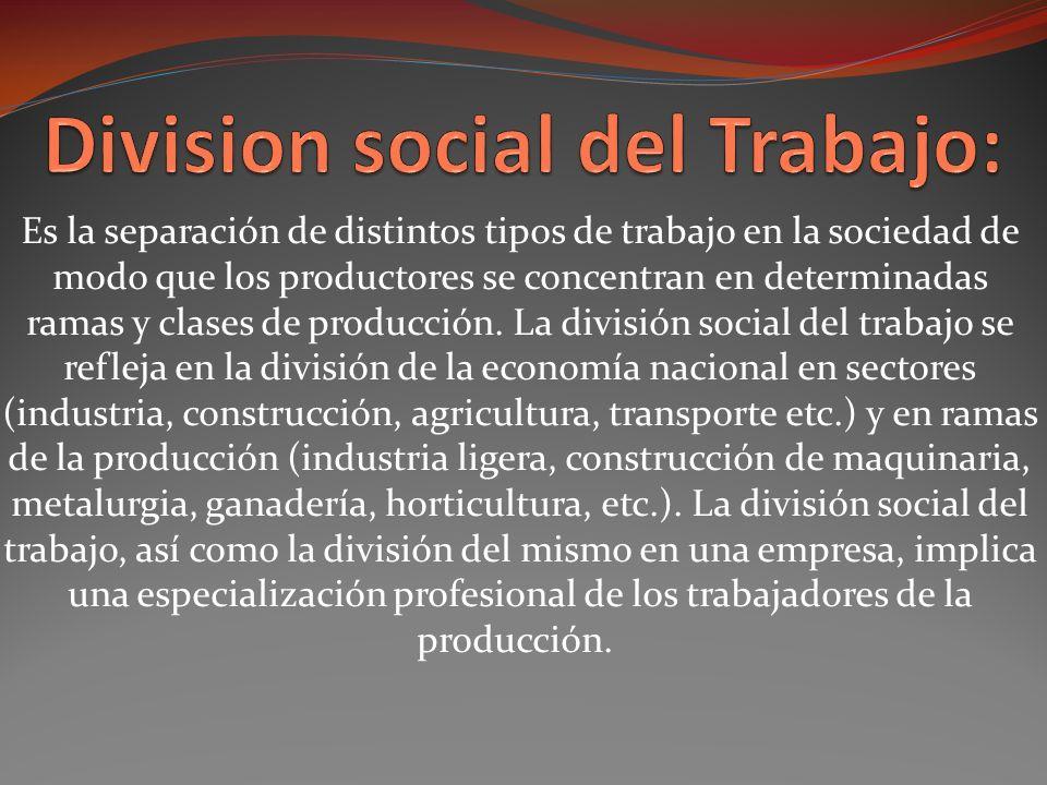 Es la separación de distintos tipos de trabajo en la sociedad de modo que los productores se concentran en determinadas ramas y clases de producción.