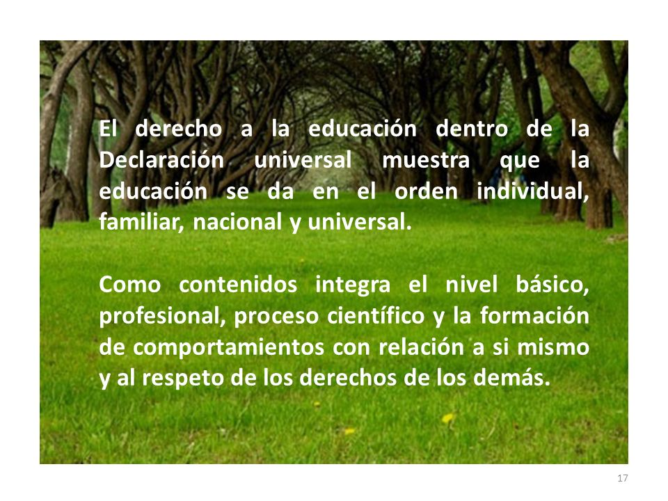17 El derecho a la educación dentro de la Declaración universal muestra que la educación se da en el orden individual, familiar, nacional y universal.