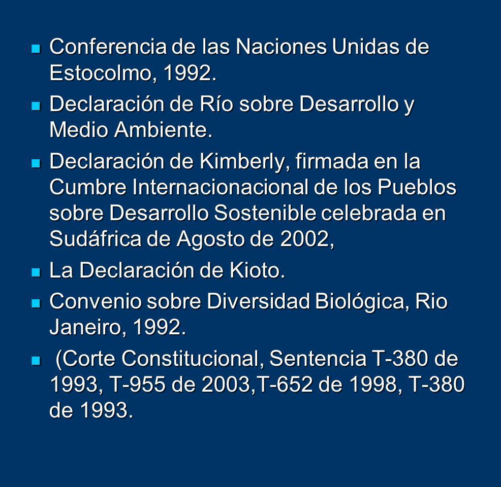Conferencia de las Naciones Unidas de Estocolmo, 1992. Conferencia de las Naciones Unidas de Estocolmo, 1992. Declaración de Río sobre Desarrollo y Me