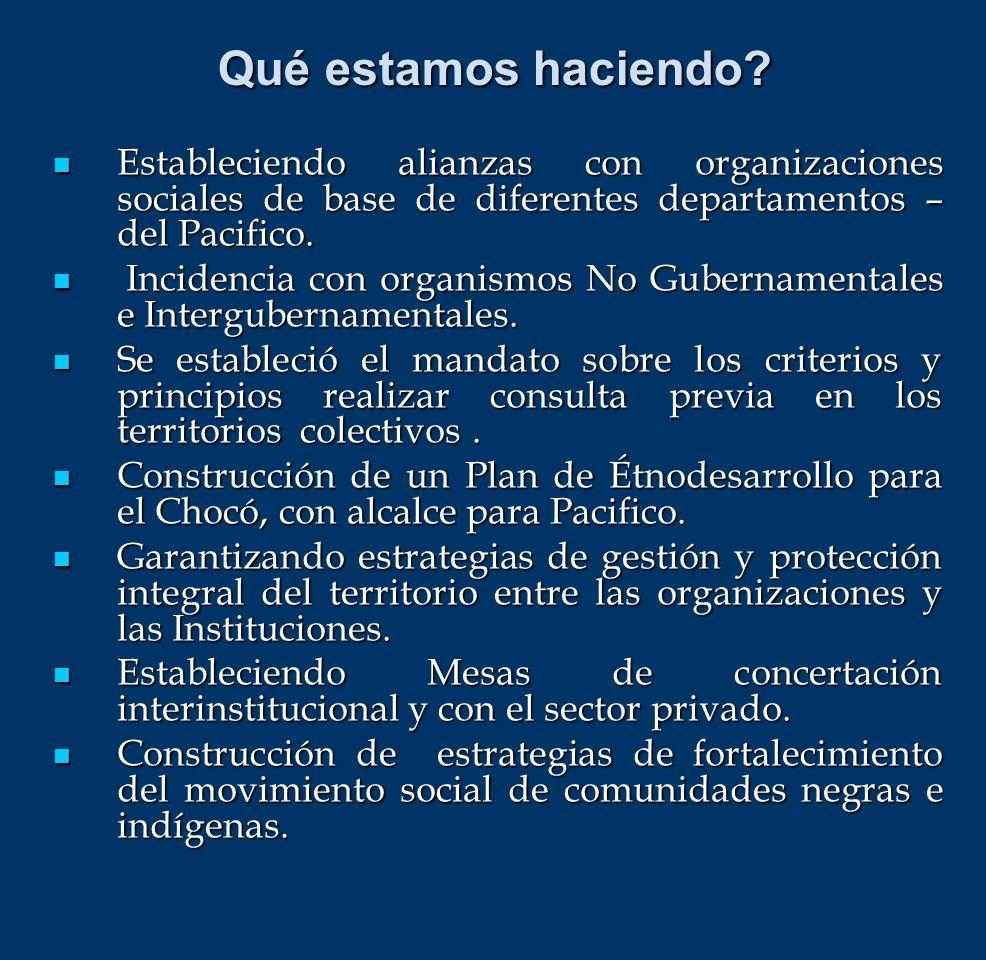 Estableciendo alianzas con organizaciones sociales de base de diferentes departamentos – del Pacifico. Estableciendo alianzas con organizaciones socia