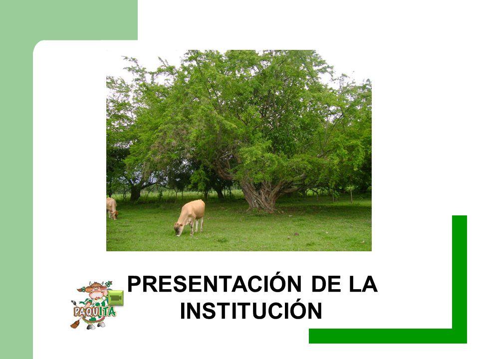 RESOLUCIÓN DE FUSIÓN: 2222 de 17 octubre de 2002 Guadalajara de Buga Junio 3 de 2011 IMPLEMENTACIÓN DEL SISTEMA DE GESTION INTEGRAL DE LA CALIDAD INSTITUCIÓN EDUCATIVA