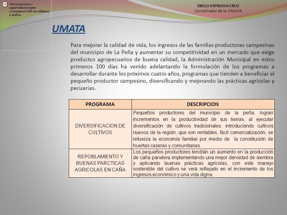 UMATA Para mejorar la calidad de vida, los ingresos de las familias productoras campesinas del municipio de La Peña y aumentar su competitividad en un