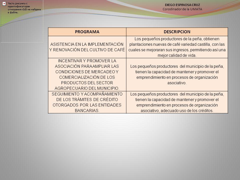 PROGRAMADESCRIPCION ASISTENCIA EN LA IMPLEMENTACIÓN Y RENOVACIÓN DEL CULTIVO DE CAFÉ Los pequeños productores de la peña, obtienen plantaciones nuevas
