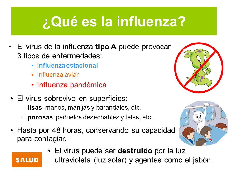 ¿Qué es la influenza? El virus de la influenza tipo A puede provocar 3 tipos de enfermedades: Influenza estacional Influenza aviar Influenza pandémica