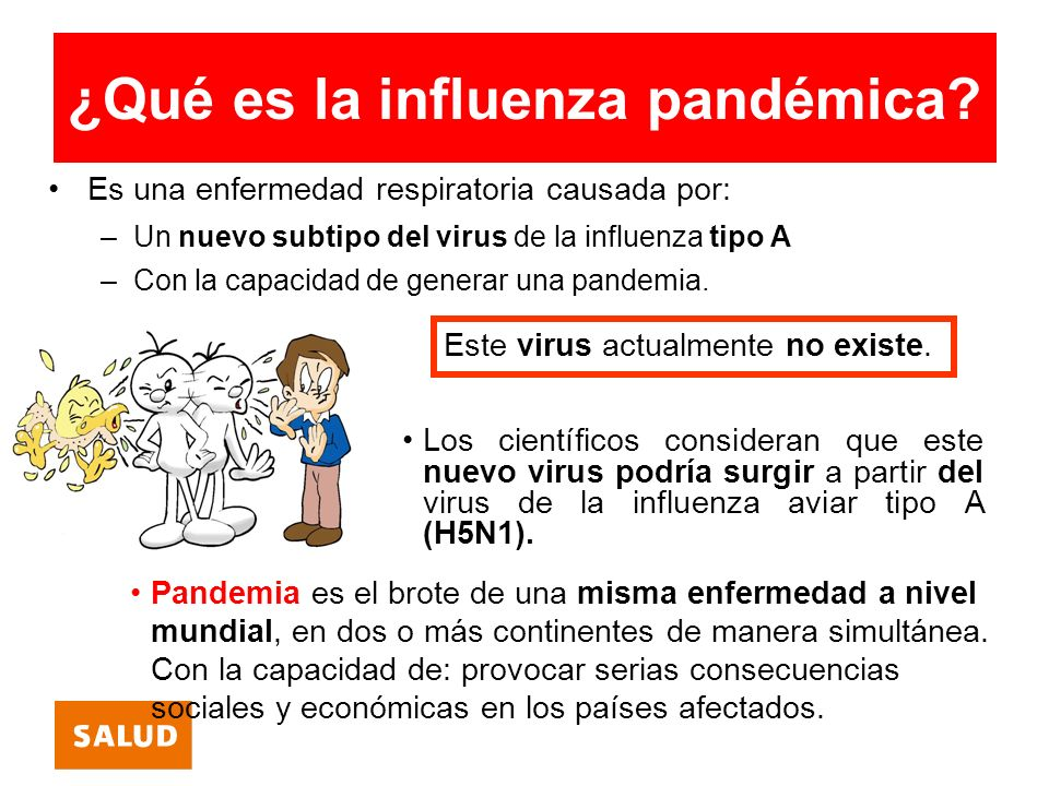 ¿Qué consecuencias tendría una pandemia de influenza.