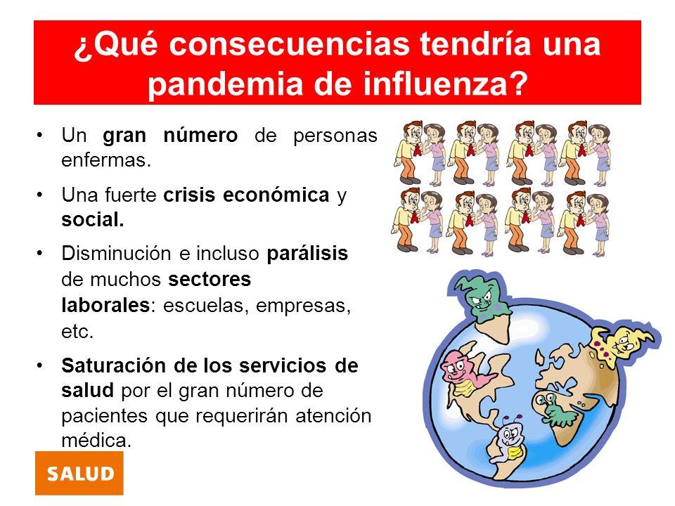 ¿Existe vacuna para la influenza pandémica.