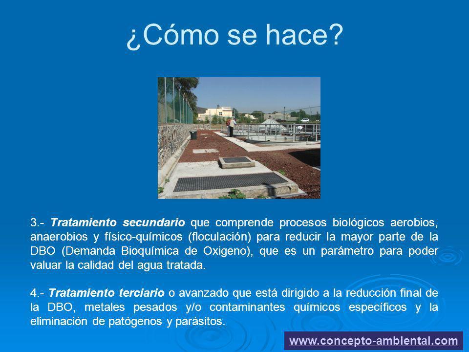 ¿Cómo se hace? www.concepto-ambiental.com 3.- Tratamiento secundario que comprende procesos biológicos aerobios, anaerobios y físico-químicos (flocula