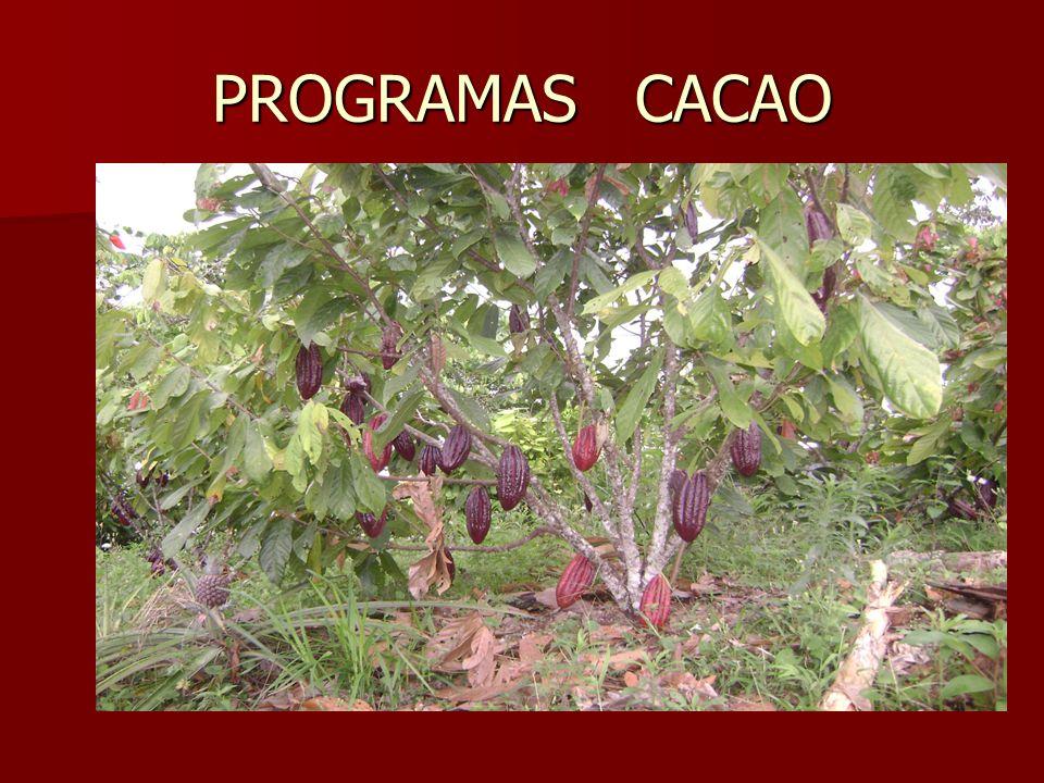 PROGRAMAS CACAO