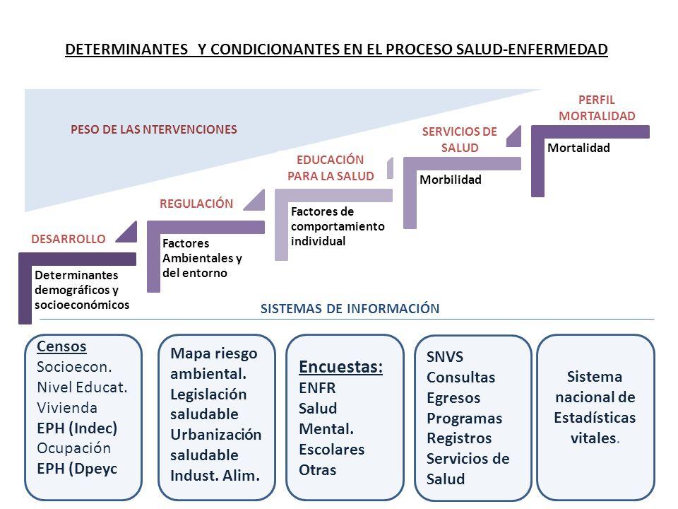 Determinantes demográficos y socioeconómicos Factores Ambientales y del entorno Factores de comportamiento individual Morbilidad Mortalidad PESO DE LA