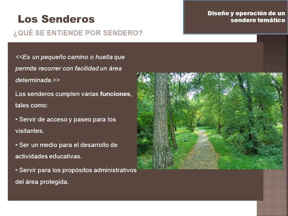 Los Senderos > Los senderos cumplen varias funciones, tales como: Servir de acceso y paseo para los visitantes. Ser un medio para el desarrollo de act