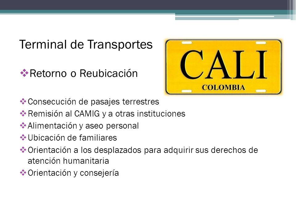 Terminal de Transportes Retorno o Reubicación Consecución de pasajes terrestres Remisión al CAMIG y a otras instituciones Alimentación y aseo personal