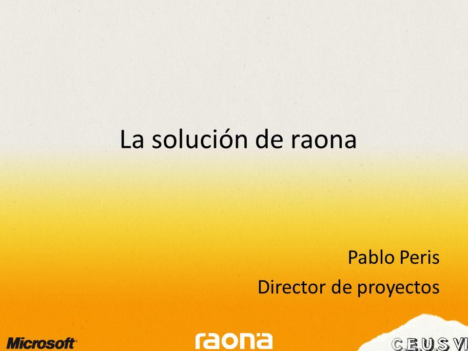 Pablo Peris Director de proyectos La solución de raona