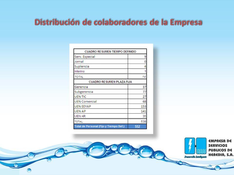 Distribución de colaboradores de la Empresa