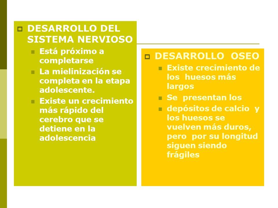 DESARROLLO DEL SISTEMA NERVIOSO Está próximo a completarse La mielinización se completa en la etapa adolescente. Existe un crecimiento más rápido del