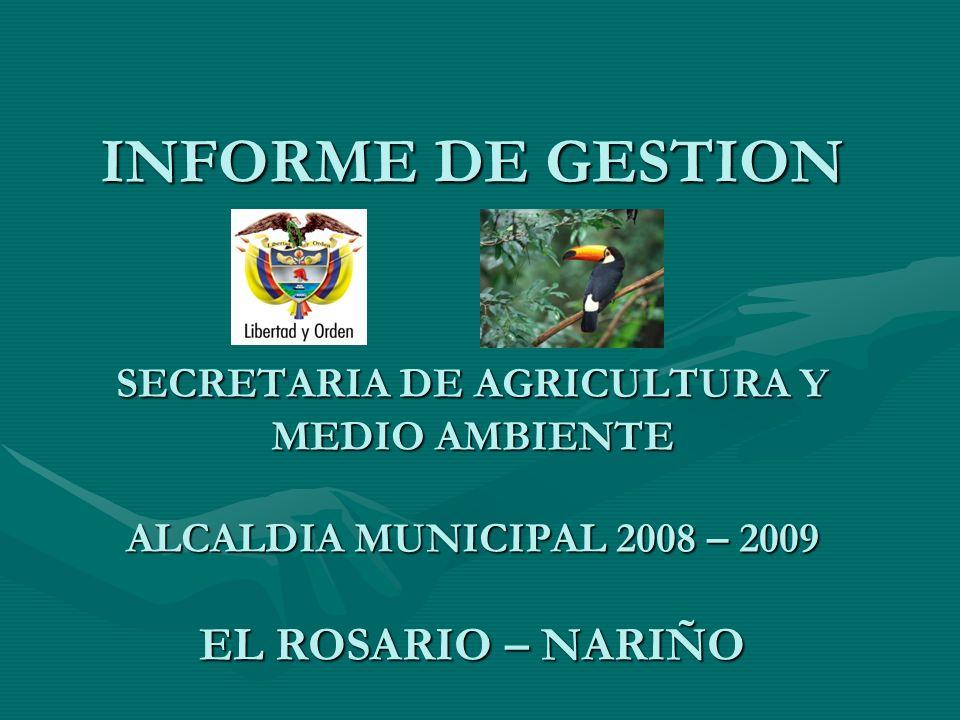 INFORME DE GESTION SECRETARIA DE AGRICULTURA Y MEDIO AMBIENTE ALCALDIA MUNICIPAL 2008 – 2009 EL ROSARIO – NARIÑO