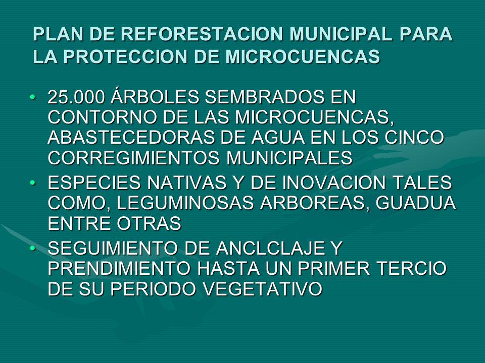 CREDITOS BANCOAGRARIO CERTIFICADO DE INFORMACION FINANCIERA (5.000) CERTIFICADO DE INFORMACION FINANCIERA (5.000) PARA DOCUMENTO DE COMPRA VENTA 2 DECLARACIONES EXTRAJUICIO PARA DOCUMENTO DE COMPRA VENTA 2 DECLARACIONES EXTRAJUICIO CERTIFICADO DE SANA POSECION DE SU FINCA PARA PROPIETARIOS CON ESCRITURA: CERTIFICADO DE PAZ Y SALVO DE LIBERTAD Y TRADICION (NOTARIA O OFICINA DE INSTRUMENTOS PUBLICOS EN PASTO) PROPUESTA PRODUCTIVA (PLANIFICADOR) APERTURA DE CUENTA DE AHORRO ($50.000).