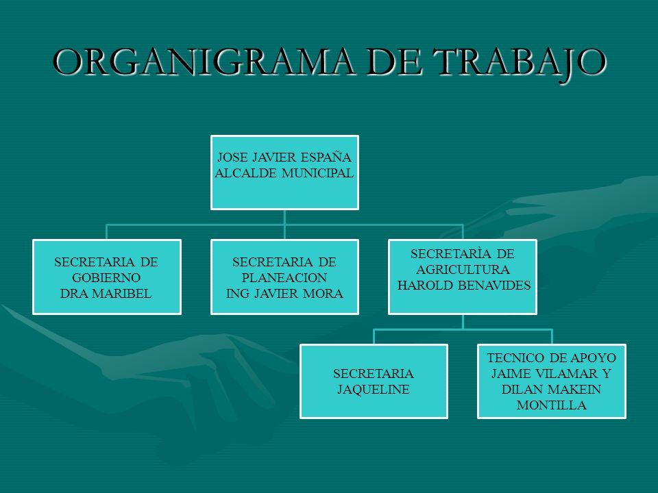 PLAN DE SUSTITUCION VOLUNTARIA DE CULTIVOS ILICITOS EN EL CORREGIMIENTO DE MARTIN PEREZ, EL ROSARIO - NARIÑO ALCALDIA MUNICIPAL DE EL ROSARIO GOBERNACION DEPARTAMENTAL DE NARIÑO – GERENCIA DE OCCIDENTEALCALDIA MUNICIPAL DE EL ROSARIO GOBERNACION DEPARTAMENTAL DE NARIÑO – GERENCIA DE OCCIDENTE MAYO DE 2008MAYO DE 2008
