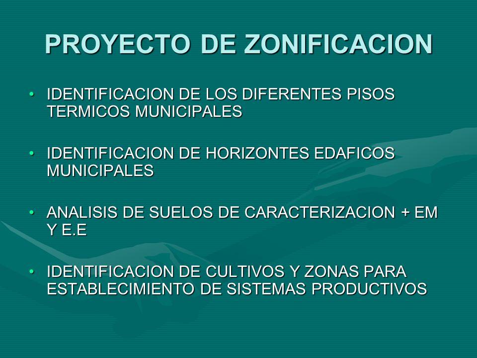 PRESENTADO EN ACCION SOCIAL INSTALACION Y MONTAJE DE 16 ESTANQUES PISICOLAS EN LA VEREDAS DEL VADO Y LA PLANADA PERTENECIENTES CORREGIMIENTO DE MARTINPEREZ, MUNICIPIO DE EL ROSARIO DEPARTAMENTO DE NARIÑO.